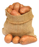 Potatoes in a sack bag Stock Images