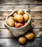 Potatoes in the sack stock photography