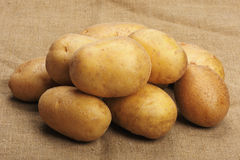Potatoes on a sacking Royalty Free Stock Photos