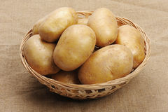 Potatoes on a sacking. Several brown potatoes in a basket on a sacking royalty free stock photography