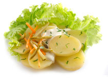 Potatoes salad Stock Photography