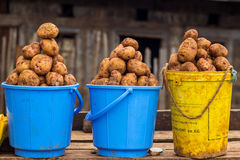 Potatoes on sale Royalty Free Stock Photography