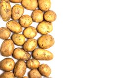A lot of dirty potatoes on a white background. Potatoes scattered on the left side Stock Photography