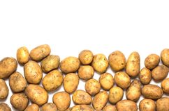 A lot of dirty potatoes on a white background. Potatoes scattered on the underside Royalty Free Stock Photo