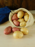 Potatoes are scattering out of a sack Royalty Free Stock Photo