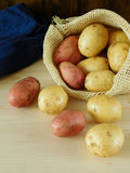 Potatoes are scattering out of a sack Stock Images