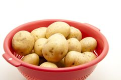 Potatoes in the sieve Stock Image