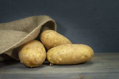 Potatoes, spilling out of hessian sack. Raw, unwashed, unpeeled potatoes, spilling out of hessian sack on a rustic old wooden background royalty free stock photos