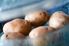 Potatoes in steamer Royalty Free Stock Photo