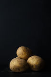 Potatoes Still Life on Black Slate with Soil Dusting Royalty Free Stock Photos