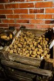 Potatoes stored in a cellar. Potatoes stored in a brick walls cellar, old wooded boxes Royalty Free Stock Photos