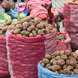 Potatoes on Street Market in La Paz, Bolivia Stock Photos