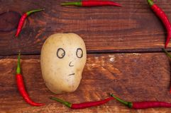 Potatoes surrounded by hot pepper. Red, hot, fresh, ingredient, pepper stock photos