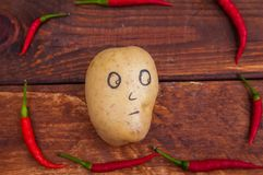 Potatoes surrounded by hot pepper. Red, hot, fresh, ingredient, pepper stock photography