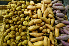 Potatoes and Sweet Potatoes Royalty Free Stock Images