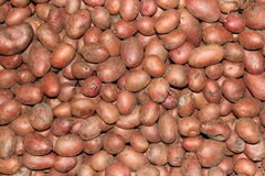 Potatoes texture Royalty Free Stock Photography