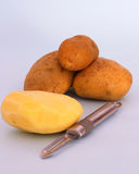Potatoes to be peeled. Potato peeler with a pile of spuds, one of them peeled stock images