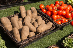 Potatoes and tomatoes. In the brown basket on sunny day Stock Images