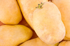 potatoes tubers  from the market on background healthy potato Vegetable food isolated Stock Photos
