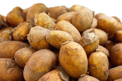 Potatoes unwashed Royalty Free Stock Images