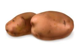 Potatoes, vector illustration Royalty Free Stock Image