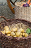 Potatoes and vegetables in baskets Royalty Free Stock Photo