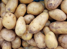 Potatoes vegetables food Royalty Free Stock Photo