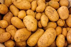 Potatoes, Vegetables, Raw, Food Stock Image