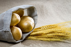 Potatoes and wheat on canvas Royalty Free Stock Photography