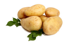 Potatoes on a white Royalty Free Stock Image