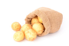 Potatoes. On a white background Royalty Free Stock Photography
