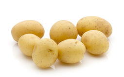 Potatoes on the white background.  New harvest. Stock Images