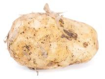 Potatoes  on white. Some fresh Potatoes  on white background Royalty Free Stock Image
