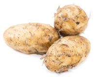 Potatoes  on white. Some fresh Potatoes  on white background Royalty Free Stock Photos