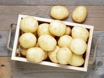 Potatoes in wooden box Stock Image