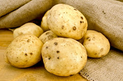 Potatoes yellow on sacking Stock Photos