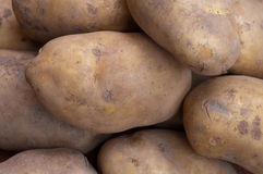 Potatos Fotografia de Stock Royalty Free