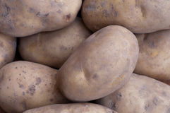 Potatos Royalty Free Stock Photos