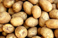 potatos Obrazy Royalty Free