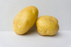 Potatos Image libre de droits