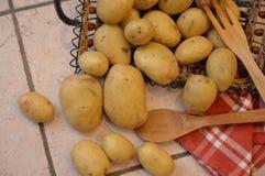 Potatos agricolture warzywa Zdjęcie Royalty Free