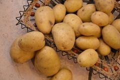Potatos agricolture warzywa Fotografia Royalty Free