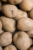 Potatos on display Royalty Free Stock Image