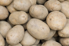 Potatos on display Royalty Free Stock Photos