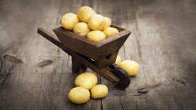 Potatos in een miniatuurkruiwagen Royalty-vrije Stock Foto