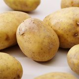 Potatos no whit Foto de Stock Royalty Free