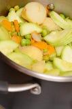Potatos, raccord en caoutchouc, pois, moelle /courgette, oignon - sont c Image libre de droits