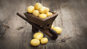 Potatos in una carriola miniatura Fotografia Stock Libera da Diritti