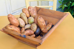 Potatos. Wood basket with potatos on a table Stock Photography