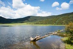 Potatso国家公园,香格里拉 库存照片